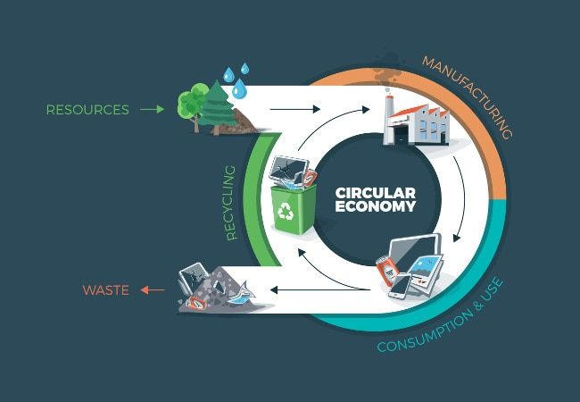 circular supply chain and economy